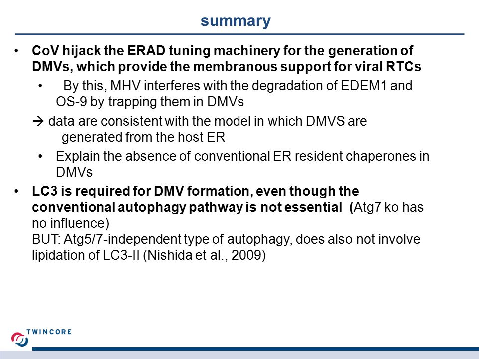 summary CoV hijack the ERAD tuning machinery for the generation of DMVs, which provide the membranous support for viral RTCs By this, MHV interferes with the degradation of EDEM1 and OS-9 by trapping them in DMVs  data are consistent with the model in which DMVS are generated from the host ER Explain the absence of conventional ER resident chaperones in DMVs LC3 is required for DMV formation, even though the conventional autophagy pathway is not essential (Atg7 ko has no influence) BUT: Atg5/7-independent type of autophagy, does also not involve lipidation of LC3-II (Nishida et al., 2009)