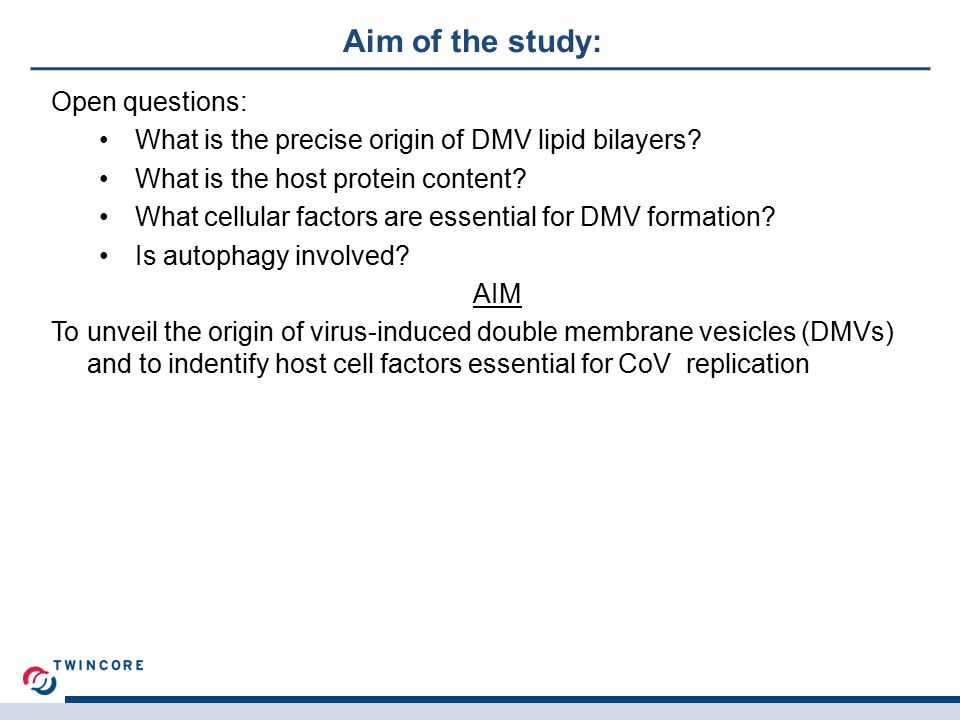Aim of the study: Open questions: What is the precise origin of DMV lipid bilayers.