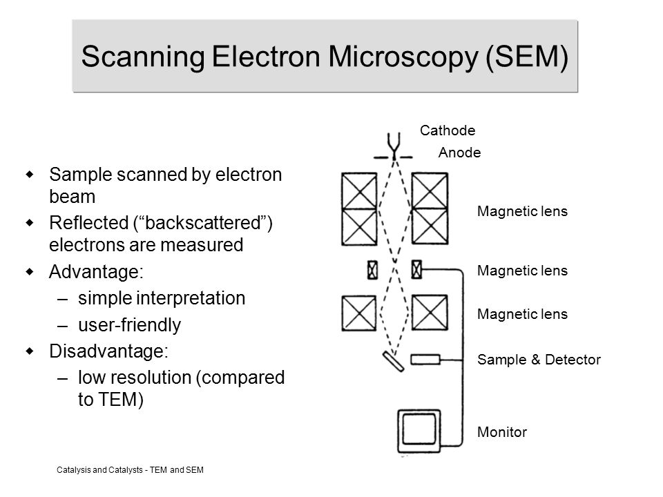 Catalysis and Catalysts - TEM and SEM Scanning Electron Microscopy (SEM) Cathode Anode Magnetic lens Sample & Detector Monitor Magnetic lens  Sample scanned by electron beam  Reflected ( backscattered ) electrons are measured  Advantage: –simple interpretation –user-friendly  Disadvantage: –low resolution (compared to TEM)