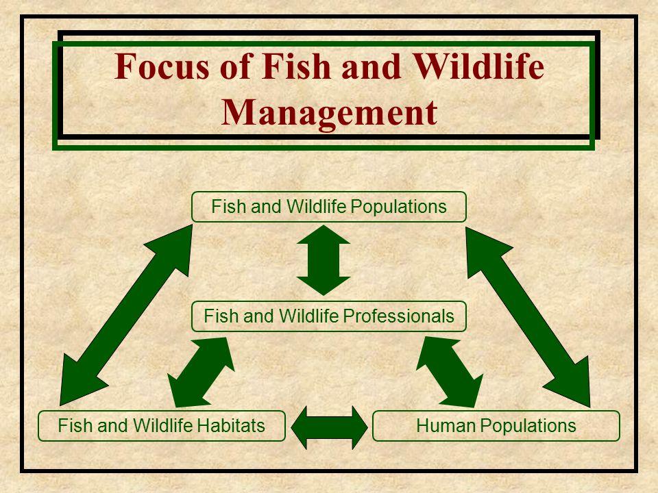 Fish and Wildlife Populations Focus of Fish and Wildlife Management Fish and Wildlife Professionals Fish and Wildlife HabitatsHuman Populations
