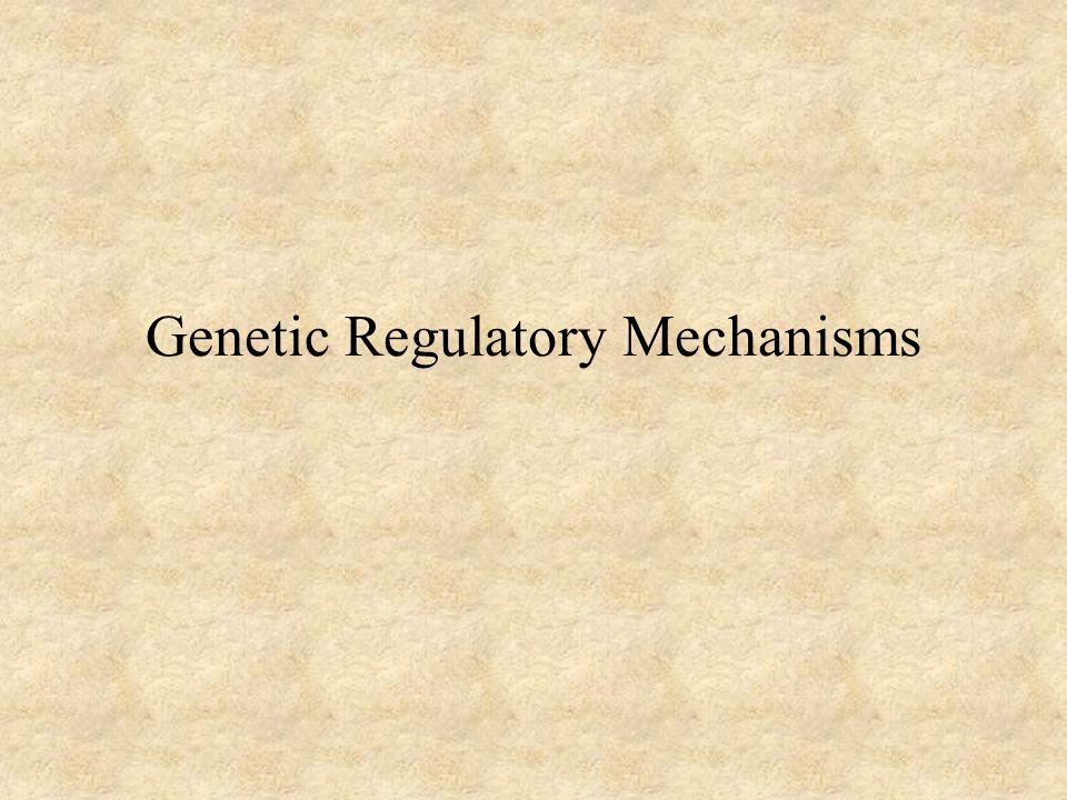 Genetic Regulatory Mechanisms