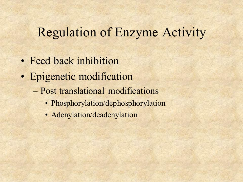 Regulation of Enzyme Activity Feed back inhibition Epigenetic modification –Post translational modifications Phosphorylation/dephosphorylation Adenylation/deadenylation