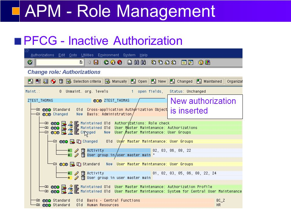 APM - Role Management PFCG - Inactive Authorization New authorization is inserted