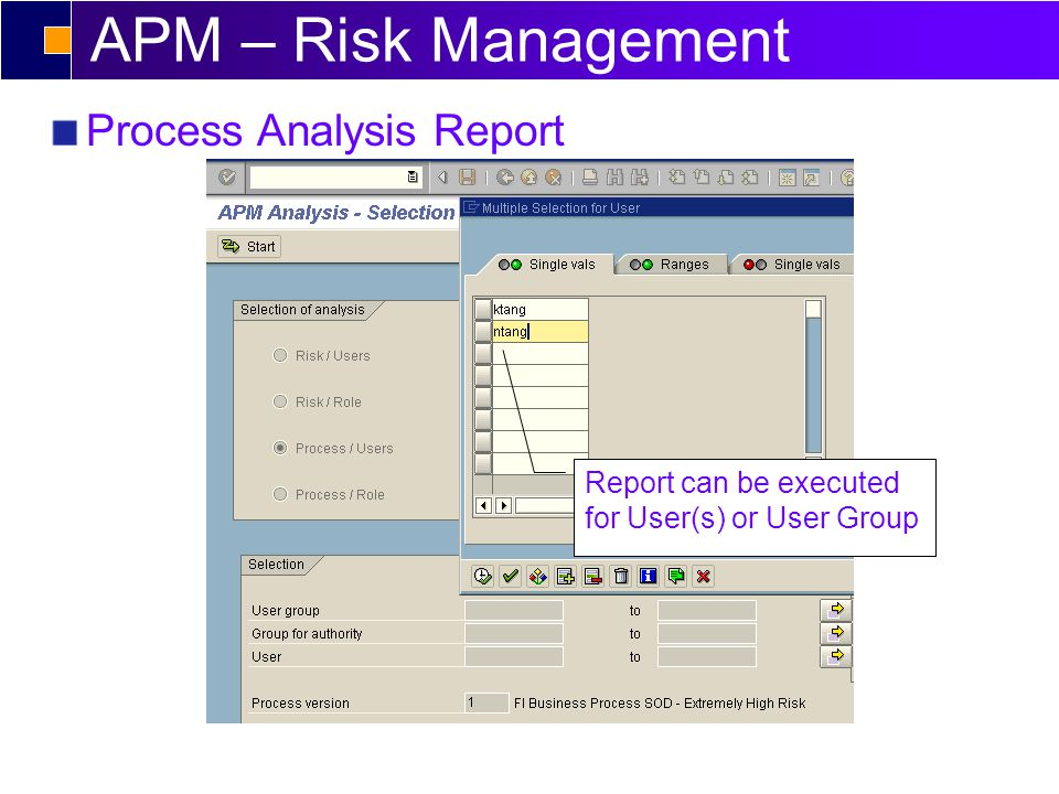 APM – Risk Management Process Analysis Report Report can be executed for User(s) or User Group