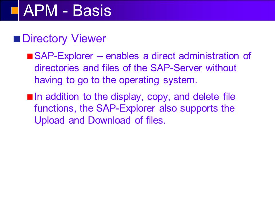 APM - Basis Directory Viewer SAP-Explorer – enables a direct administration of directories and files of the SAP-Server without having to go to the operating system.