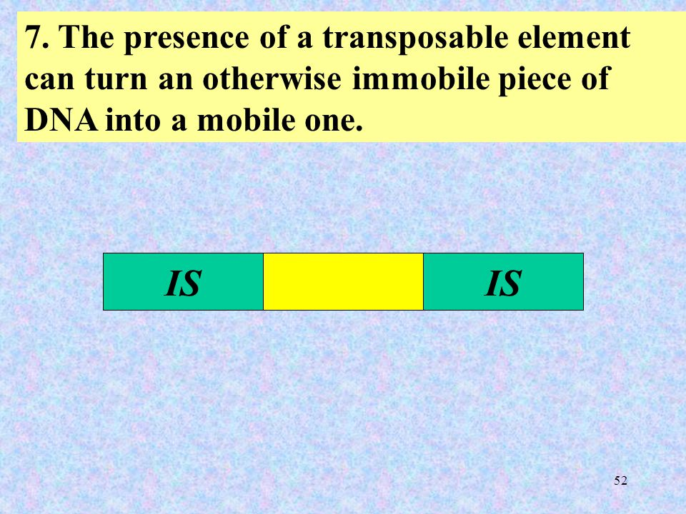 52 7. The presence of a transposable element can turn an otherwise immobile piece of DNA into a mobile one. IS