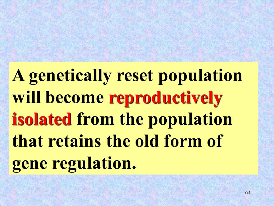 64 reproductively isolated A genetically reset population will become reproductively isolated from the population that retains the old form of gene regulation.