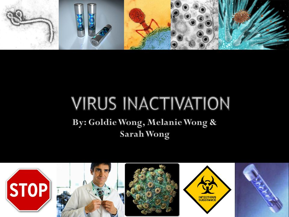 Viruses can be lipid-coated or non- enveloped.