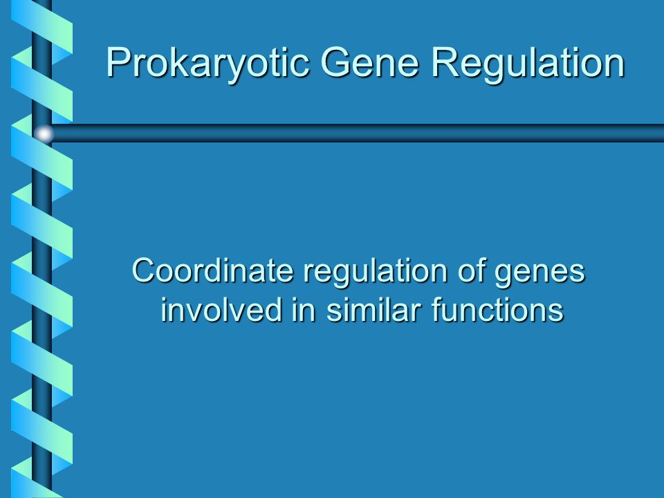 Prokaryotic Gene Regulation Coordinate regulation of genes involved in similar functions