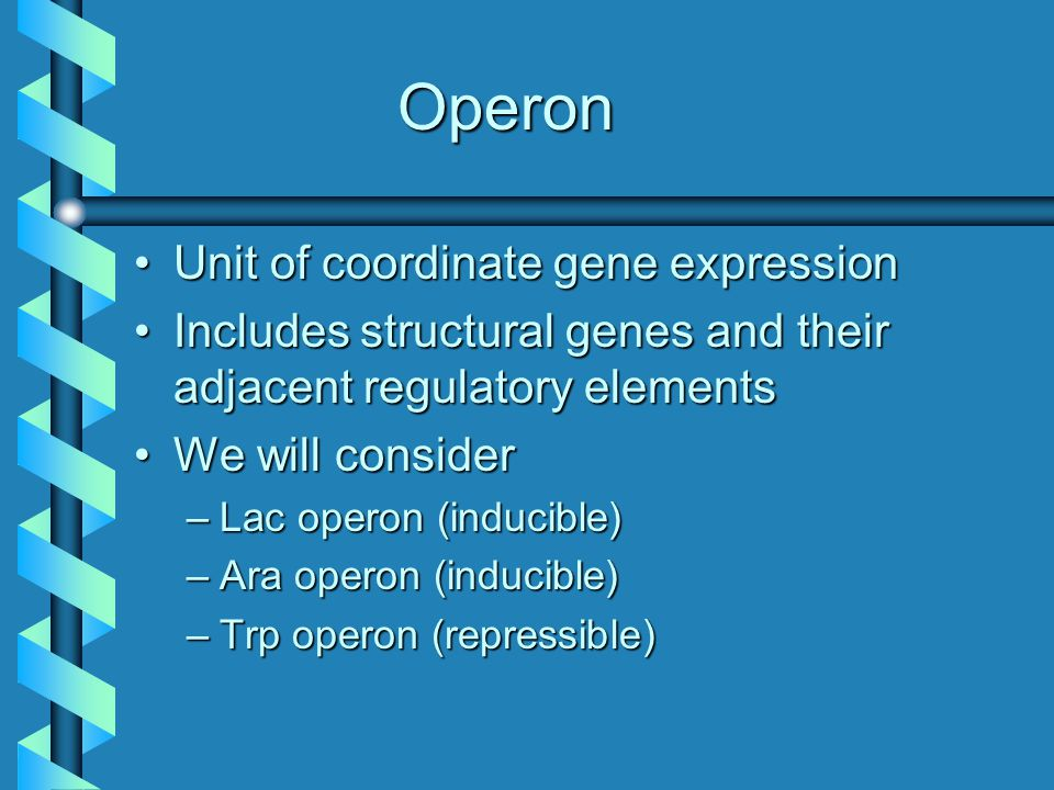 Types of Operons Inducible Initial condition: OFF Inducer switches operon ON Repressible Initial condition: ON Repressor switches operon OFF