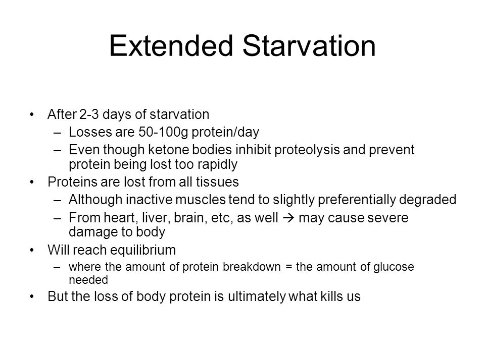 Extended Starvation After 2-3 days of starvation –Losses are 50-100g protein/day –Even though ketone bodies inhibit proteolysis and prevent protein being lost too rapidly Proteins are lost from all tissues –Although inactive muscles tend to slightly preferentially degraded –From heart, liver, brain, etc, as well  may cause severe damage to body Will reach equilibrium –where the amount of protein breakdown = the amount of glucose needed But the loss of body protein is ultimately what kills us