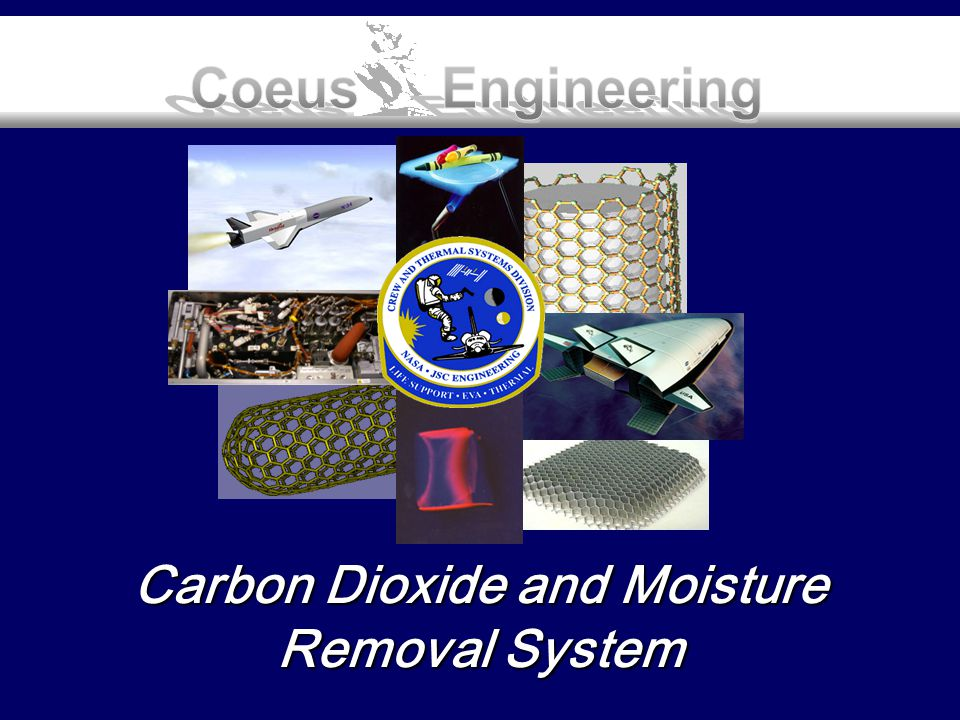 Carbon Dioxide and Moisture Removal System