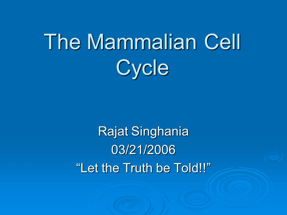 The Mammalian Cell Cycle Rajat Singhania 03/21/2006 Let the Truth be Told!!