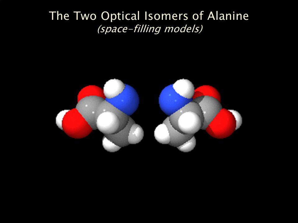 The Two Optical Isomers of Alanine (space-filling models)