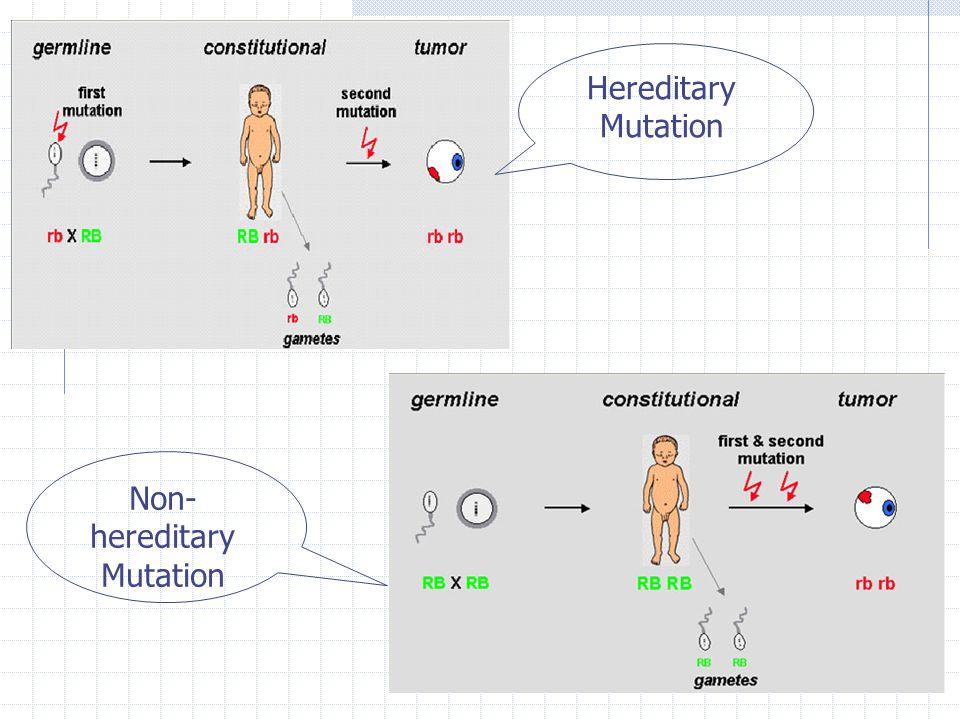 Hereditary Mutation Non- hereditary Mutation