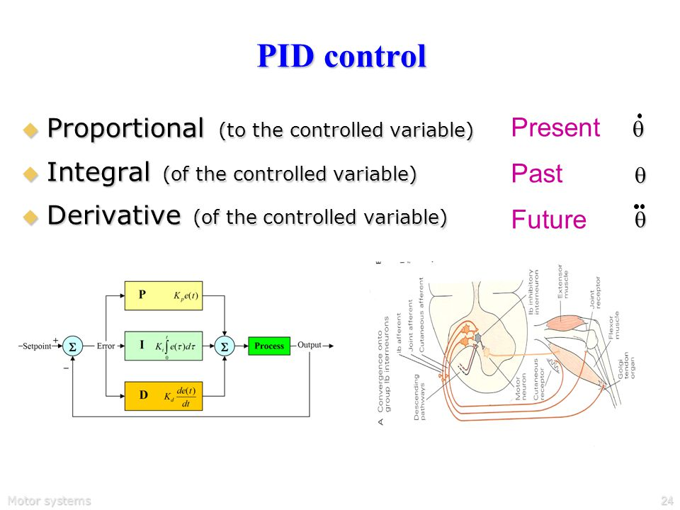 Motor systems24 PID control  Proportional (to the controlled variable)  Integral (of the controlled variable)  Derivative (of the controlled variable) Present Past Future  
