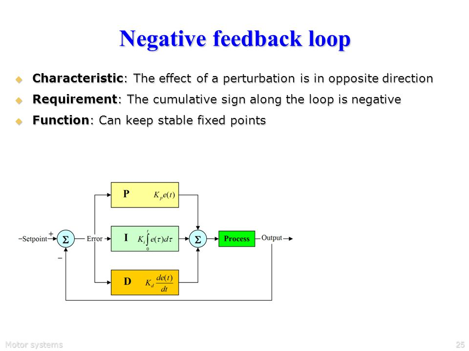 Motor systems25 Negative feedback loop  Characteristic: The effect of a perturbation is in opposite direction  Requirement: The cumulative sign along the loop is negative  Function: Can keep stable fixed points