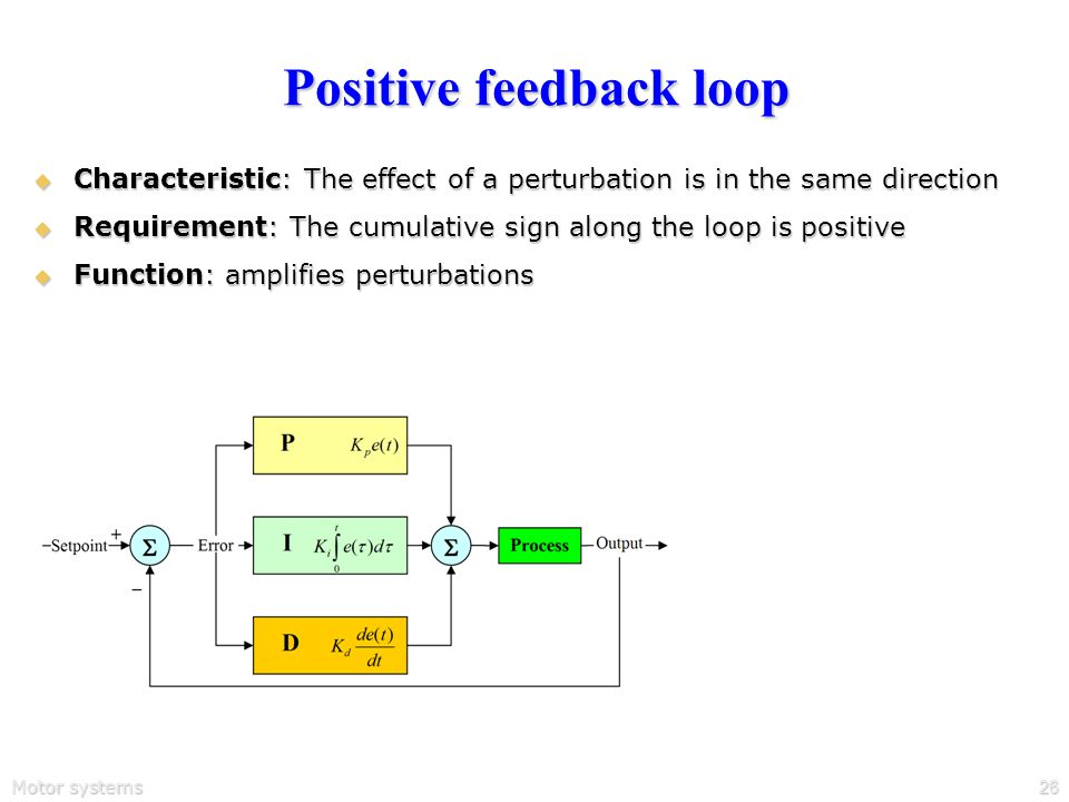 Motor systems26 Positive feedback loop  Characteristic: The effect of a perturbation is in the same direction  Requirement: The cumulative sign along the loop is positive  Function: amplifies perturbations