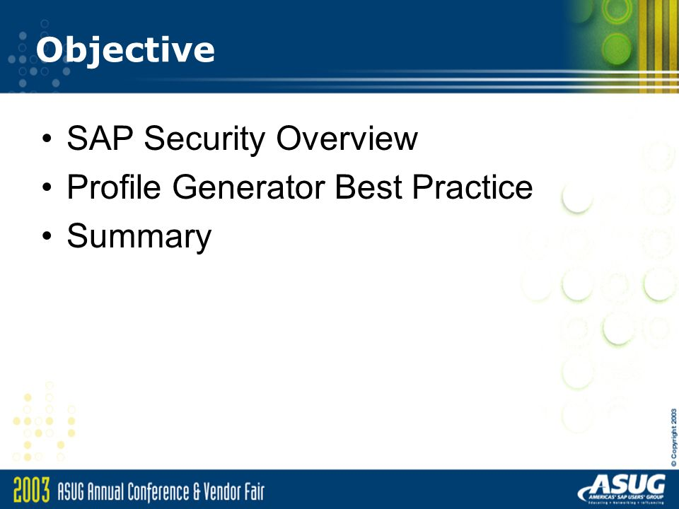Objective SAP Security Overview Profile Generator Best Practice Summary