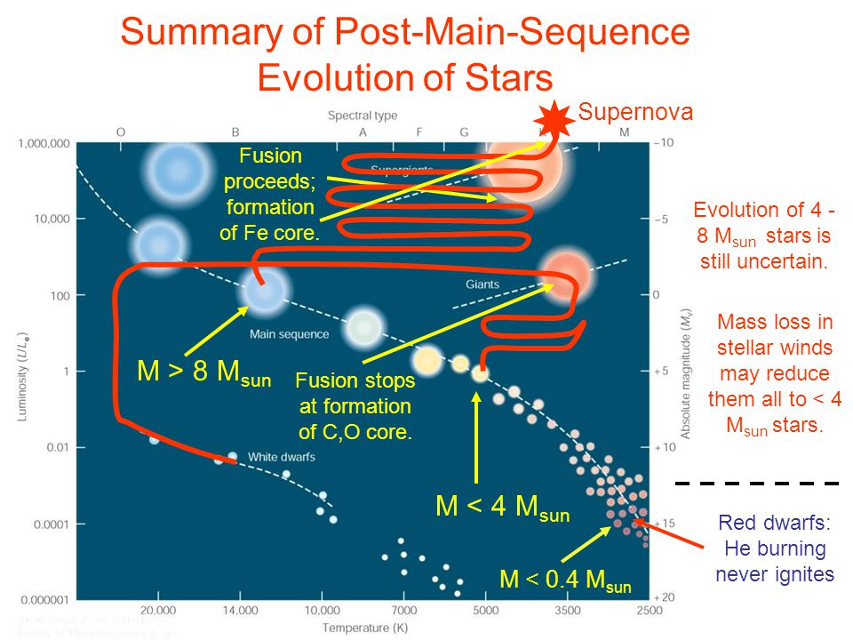 Summary of Post-Main-Sequence Evolution of Stars M > 8 M sun M < 4 M sun Evolution of 4 - 8 M sun stars is still uncertain.