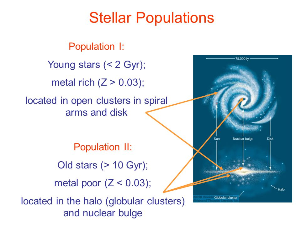 Stellar Populations Population I: Young stars (< 2 Gyr); metal rich (Z > 0.03); located in open clusters in spiral arms and disk Population II: Old st