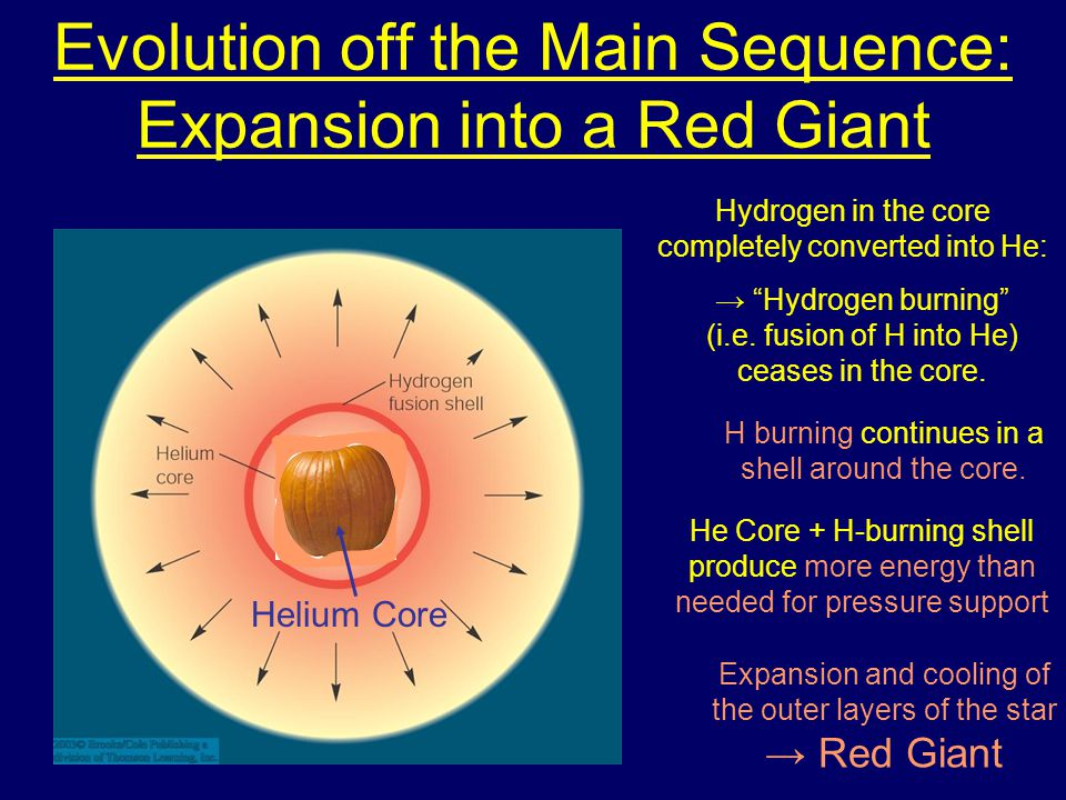 Evolution off the Main Sequence: Expansion into a Red Giant Hydrogen in the core completely converted into He: H burning continues in a shell around the core.
