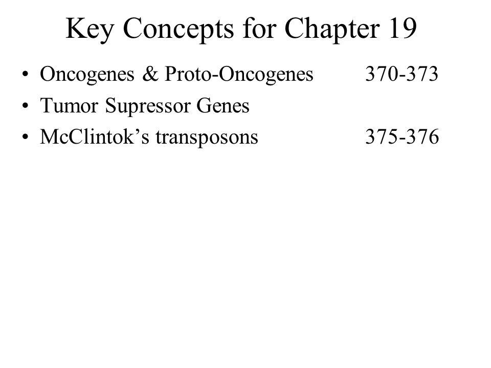 Key Concepts for Chapter 19 Oncogenes & Proto-Oncogenes370-373 Tumor Supressor Genes McClintok's transposons375-376