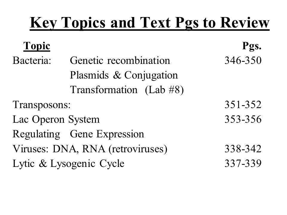 Key Topics and Text Pgs to Review TopicPgs. Bacteria:Genetic recombination 346-350 Plasmids & Conjugation Transformation (Lab #8) Transposons: 351-352