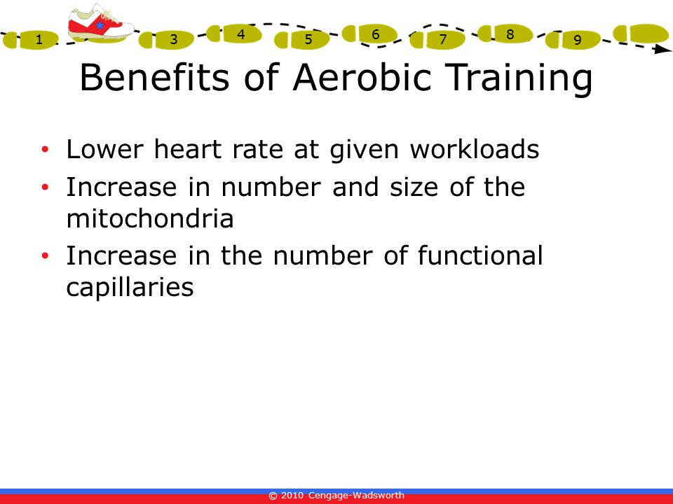 © 2010 Cengage-Wadsworth 1 2 3 4 5 6 7 8 9 Benefits of Aerobic Training Lower heart rate at given workloads Increase in number and size of the mitochondria Increase in the number of functional capillaries