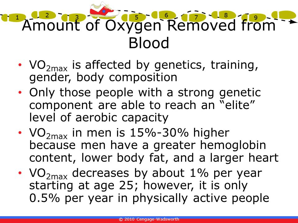 © 2010 Cengage-Wadsworth 1 2 3 4 5 6 7 8 9 Amount of Oxygen Removed from Blood VO 2max is affected by genetics, training, gender, body composition Only those people with a strong genetic component are able to reach an elite level of aerobic capacity VO 2max in men is 15%-30% higher because men have a greater hemoglobin content, lower body fat, and a larger heart VO 2max decreases by about 1% per year starting at age 25; however, it is only 0.5% per year in physically active people