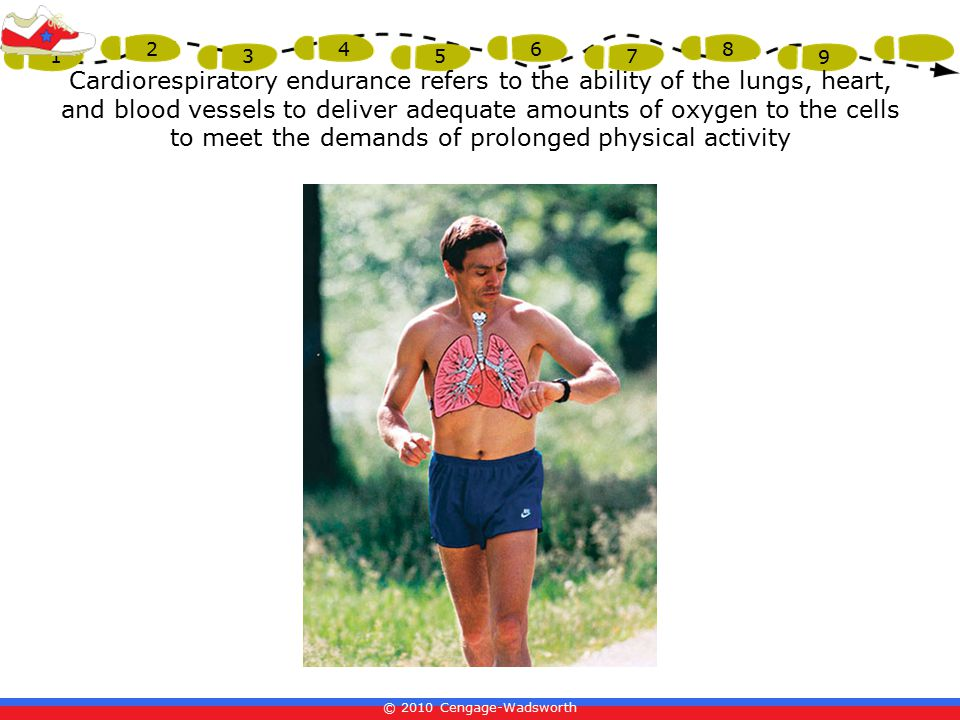 © 2010 Cengage-Wadsworth 1 2 3 4 5 6 7 8 9 Cardiorespiratory endurance refers to the ability of the lungs, heart, and blood vessels to deliver adequate amounts of oxygen to the cells to meet the demands of prolonged physical activity