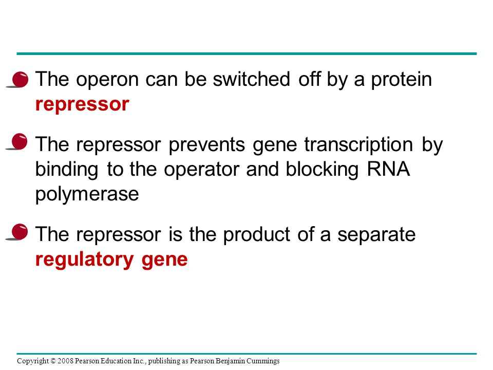 Copyright © 2008 Pearson Education Inc., publishing as Pearson Benjamin Cummings The phenomenon of inhibition of gene expression by RNA molecules is called RNA interference (RNAi) RNAi is caused by small interfering RNAs (siRNAs) siRNAs and miRNAs are similar but form from different RNA precursors