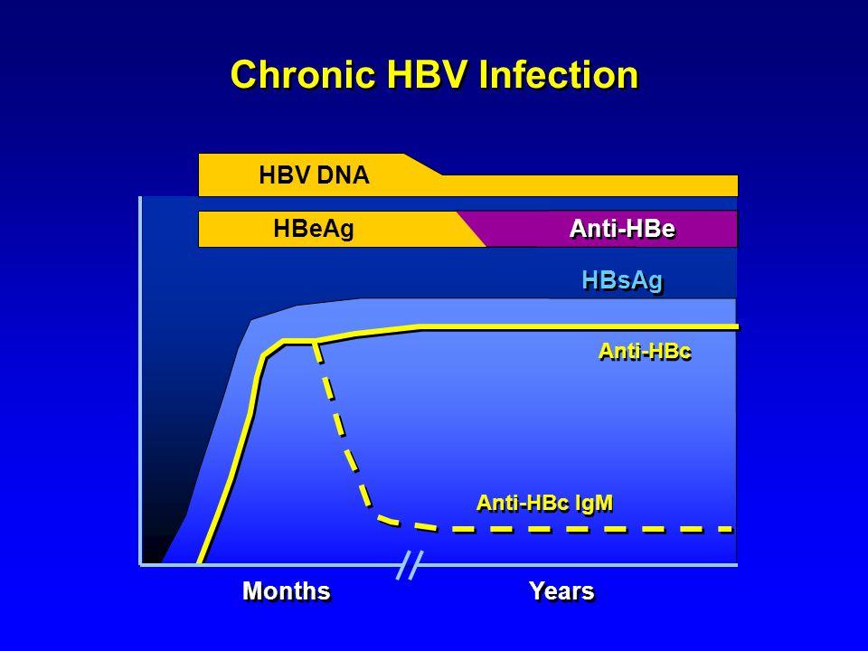 Chronic HBV Infection HBV DNA HBeAg Months Years Anti-HBc IgM Anti-HBc Anti-HBe HBsAg