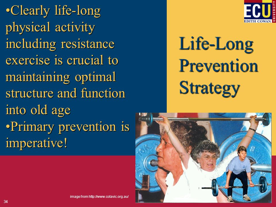 Life-Long Prevention Strategy Clearly life-long physical activity including resistance exercise is crucial to maintaining optimal structure and function into old ageClearly life-long physical activity including resistance exercise is crucial to maintaining optimal structure and function into old age Primary prevention is imperative!Primary prevention is imperative.