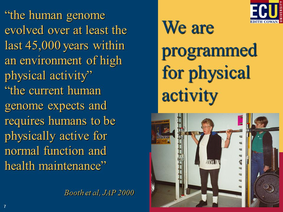 We are programmed for physical activity the human genome evolved over at least the last 45,000 years within an environment of high physical activity the current human genome expects and requires humans to be physically active for normal function and health maintenance Booth et al, JAP 2000 7