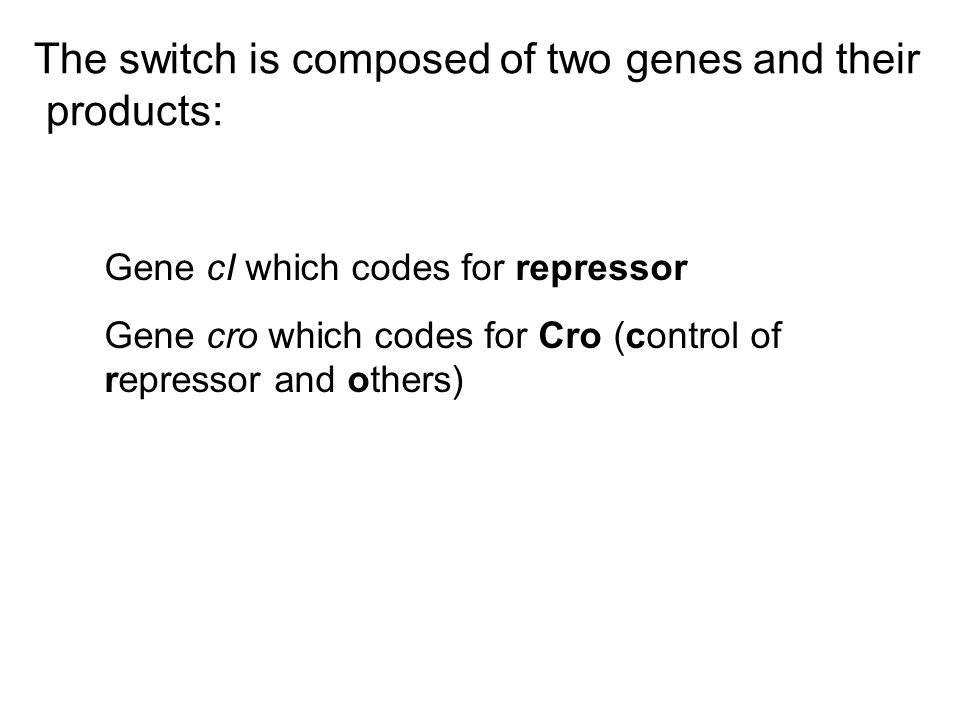 The switch is composed of two genes and their products: Gene cI which codes for repressor Gene cro which codes for Cro (control of repressor and other