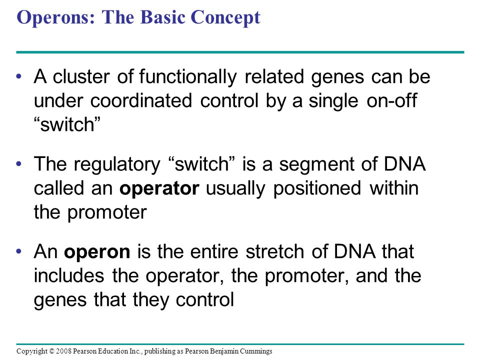 Copyright © 2008 Pearson Education Inc., publishing as Pearson Benjamin Cummings Operons: The Basic Concept A cluster of functionally related genes can be under coordinated control by a single on-off switch The regulatory switch is a segment of DNA called an operator usually positioned within the promoter An operon is the entire stretch of DNA that includes the operator, the promoter, and the genes that they control