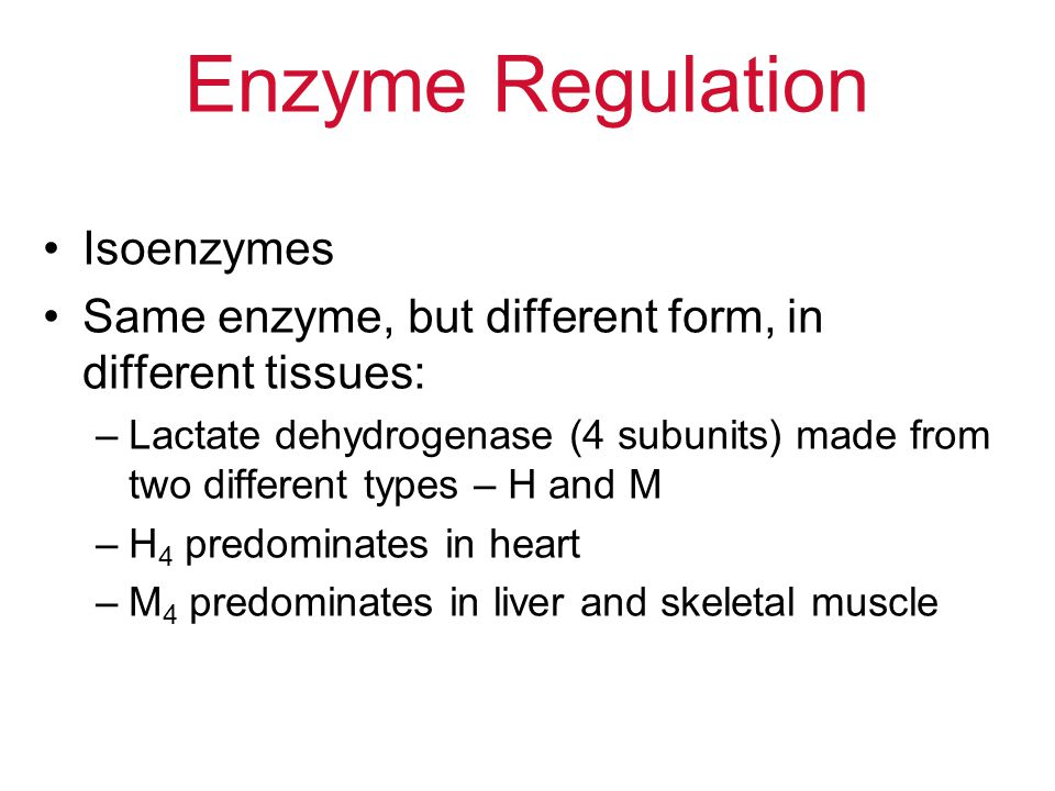 Enzyme Regulation Isoenzymes Same enzyme, but different form, in different tissues: –Lactate dehydrogenase (4 subunits) made from two different types