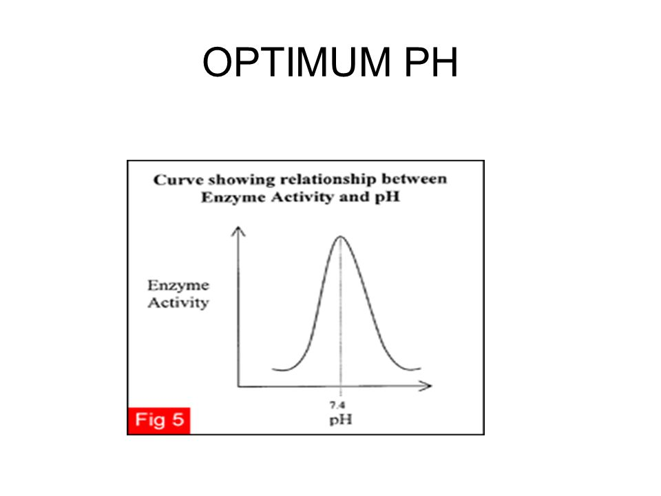 OPTIMUM PH