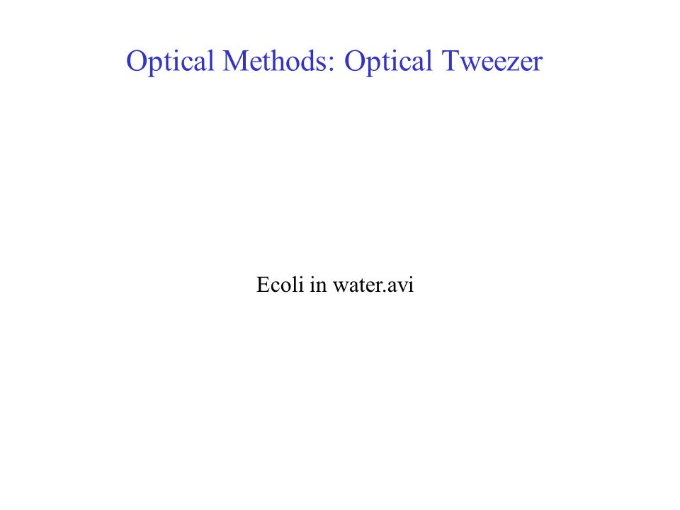 Optical Methods: Optical Tweezer Ecoli in water.avi