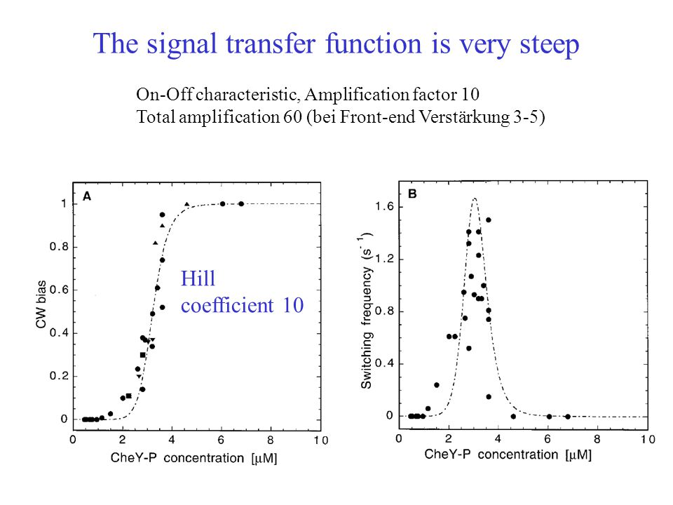 Hill coefficient 10 On-Off characteristic, Amplification factor 10 Total amplification 60 (bei Front-end Verstärkung 3-5) The signal transfer function is very steep
