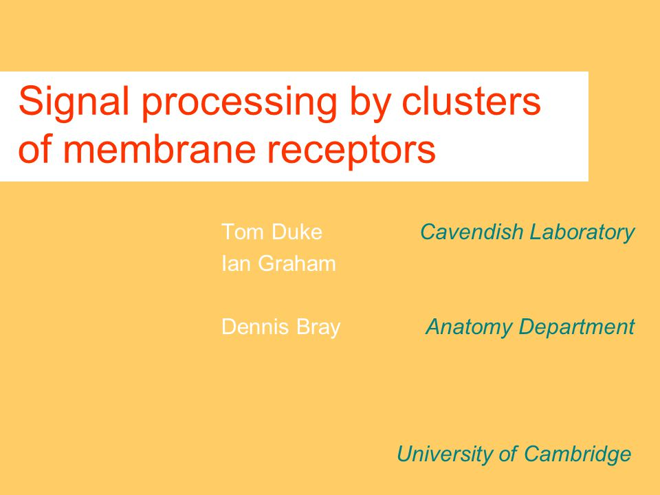 Signal processing by clusters of membrane receptors Tom DukeCavendish Laboratory Ian Graham Dennis Bray Anatomy Department University of Cambridge