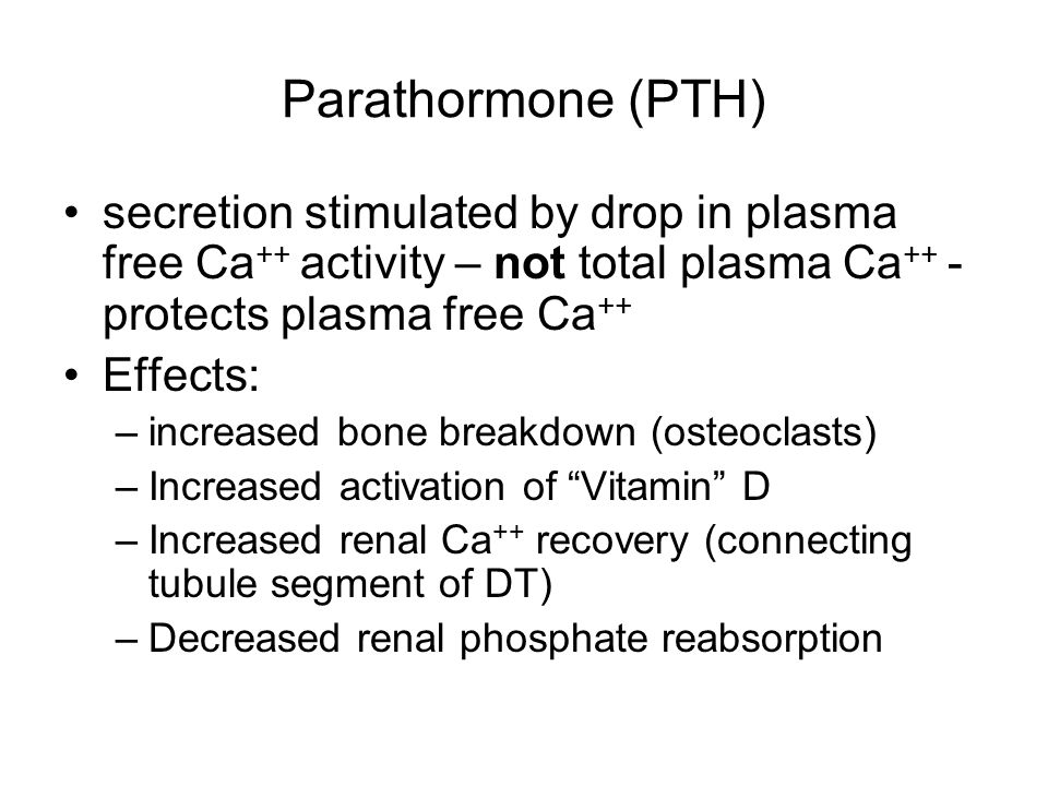 Parathormone (PTH) secretion stimulated by drop in plasma free Ca ++ activity – not total plasma Ca ++ - protects plasma free Ca ++ Effects: –increase