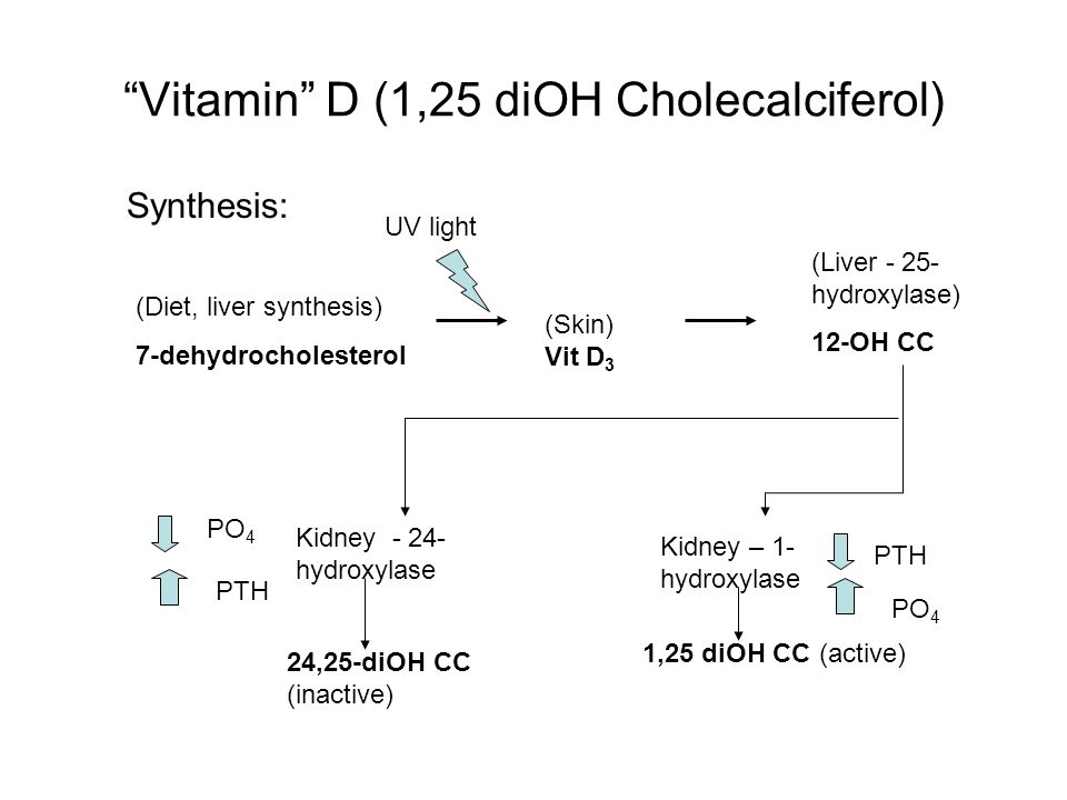 Vitamin D (1,25 diOH Cholecalciferol) Synthesis: (Diet, liver synthesis) 7-dehydrocholesterol (Skin) Vit D 3 (Liver - 25- hydroxylase) 12-OH CC Kidney – 1- hydroxylase Kidney - 24- hydroxylase 24,25-diOH CC (inactive) 1,25 diOH CC (active) PO 4 PTH PO 4 UV light