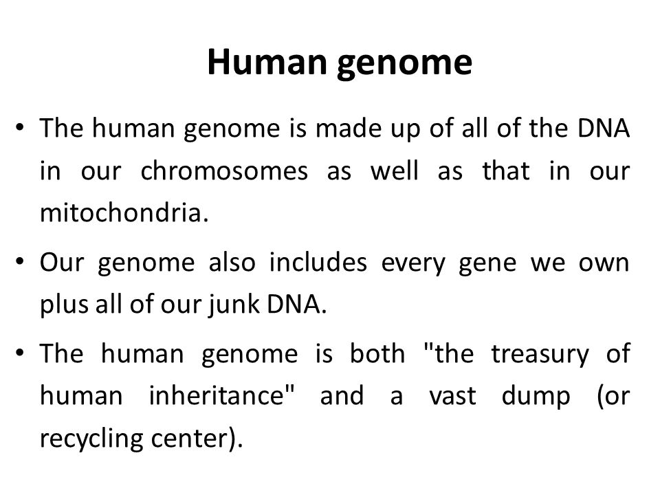 Human genome The human genome is made up of all of the DNA in our chromosomes as well as that in our mitochondria.