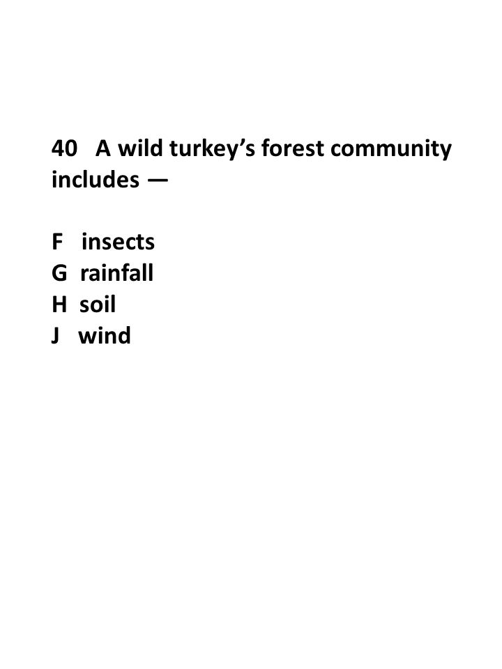 40 A wild turkey's forest community includes — F insects G rainfall H soil J wind