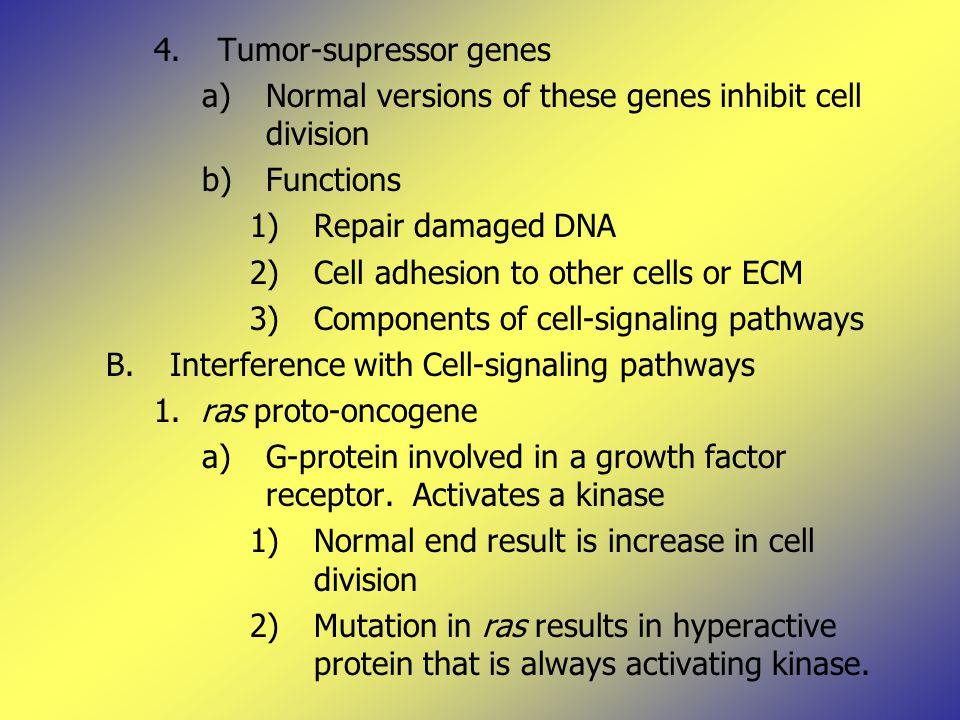 4.Tumor-supressor genes a)Normal versions of these genes inhibit cell division b)Functions 1)Repair damaged DNA 2)Cell adhesion to other cells or ECM 3)Components of cell-signaling pathways B.Interference with Cell-signaling pathways 1.