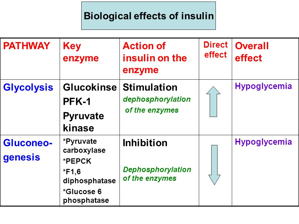 Biological effects of insulin Overall effect Direct effect Action of insulin on the enzyme Key enzyme PATHWAY Hypoglycemia Stimulation dephosphorylation of the enzymes Glucokinse PFK-1 Pyruvate kinase Glycolysis Hypoglycemia Inhibition Dephosphorylation of the enzymes *Pyruvate carboxylase *PEPCK *F1,6 diphosphatase *Glucose 6 phosphatase Gluconeo- genesis