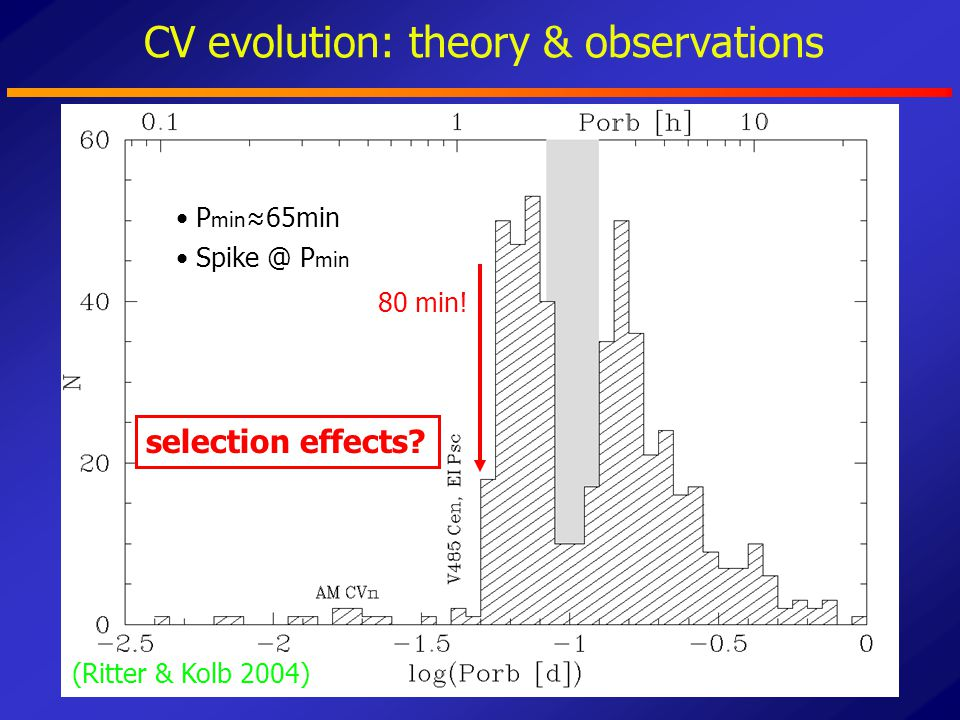 CV evolution: theory & observations P min ≈65min 80 min! (Ritter & Kolb 2004) Spike @ P min selection effects?