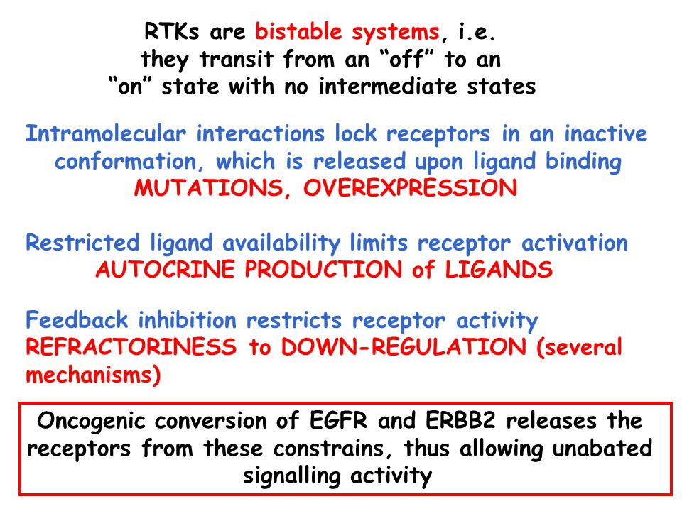 RTKs are bistable systems, i.e.